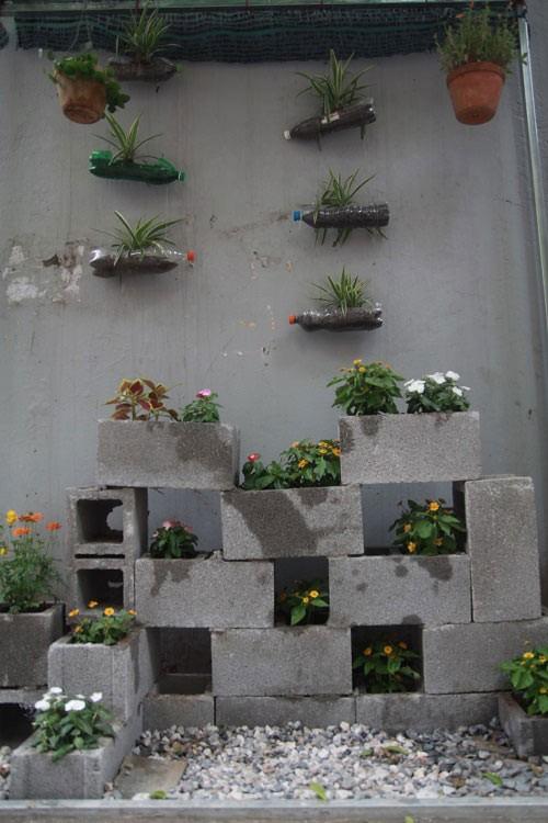 Chàng sinh viên biến bãi rác thành vườn hoa đẹp lung linh - ảnh 2