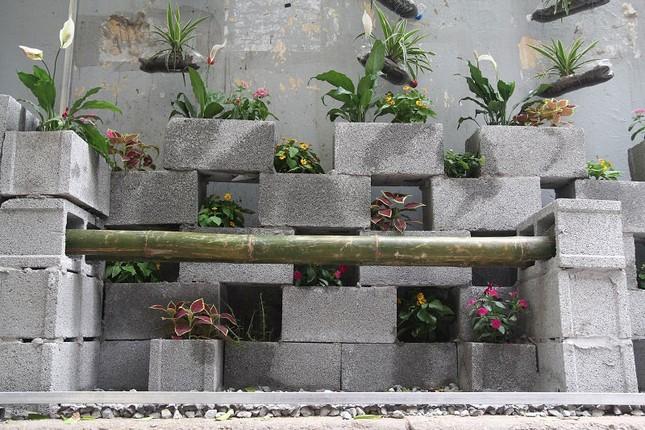 Chàng sinh viên biến bãi rác thành vườn hoa đẹp lung linh - ảnh 3