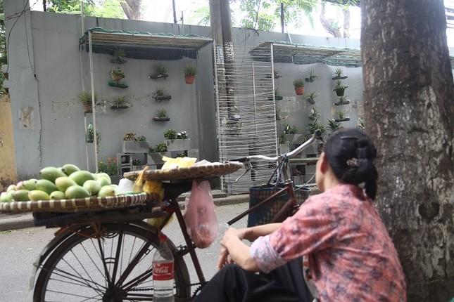 Chàng sinh viên biến bãi rác thành vườn hoa đẹp lung linh - ảnh 7
