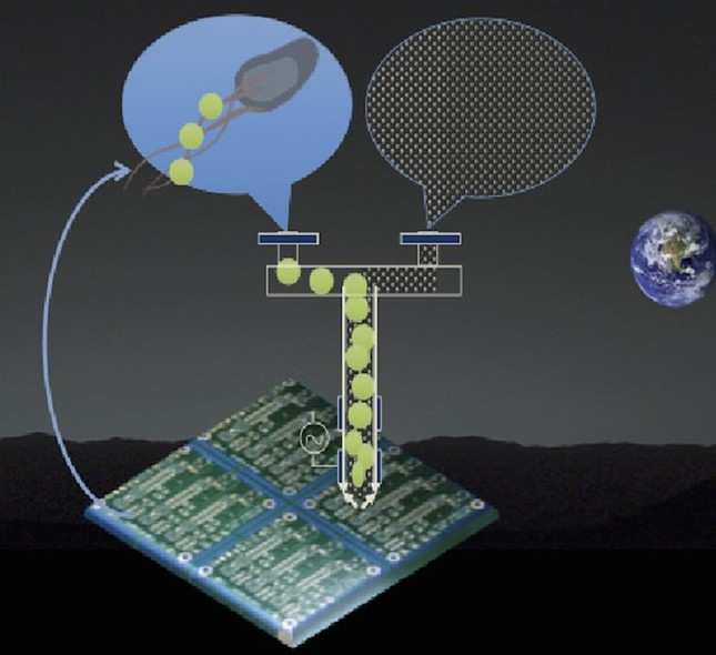 Các sáng chế đột phá của NASA - ảnh 14