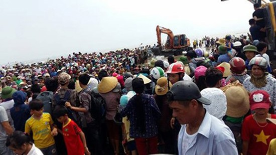 Giải cứu cá voi nặng hơn 10 tấn dạt vào bờ biển Nghệ An - ảnh 3