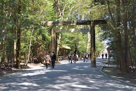 Đền thờ linh thiêng nhất Nhật Bản 20 năm xây lại một lần - ảnh 1