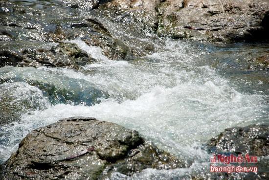 Về Con Cuông tắm Khe nước Mọc, ăn cá nướng và xôi tím - ảnh 1