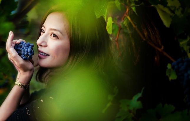 Cận cảnh vườn nho 97 tỷ của 'Tiểu Yến Tử' Triệu Vy - ảnh 2