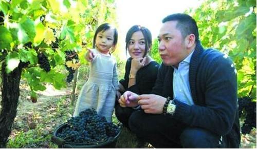 Cận cảnh vườn nho 97 tỷ của 'Tiểu Yến Tử' Triệu Vy - ảnh 5