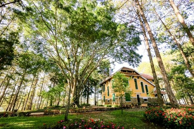 Khuôn viên như vườn thượng uyển trong Dinh Bảo Đại - ảnh 10