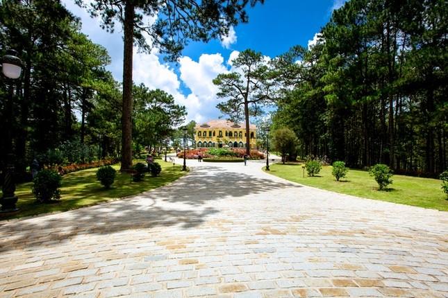 Khuôn viên như vườn thượng uyển trong Dinh Bảo Đại - ảnh 2
