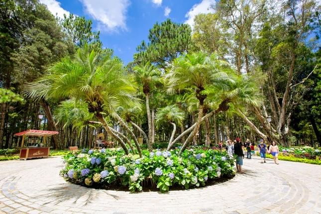 Khuôn viên như vườn thượng uyển trong Dinh Bảo Đại - ảnh 6