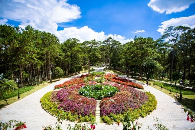 Khuôn viên như vườn thượng uyển trong Dinh Bảo Đại - ảnh 9