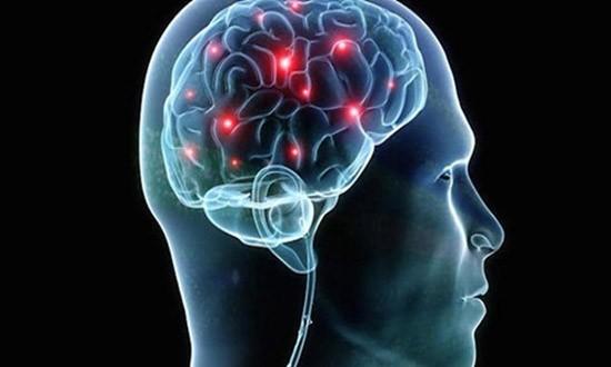 Tham vọng chế tạo não nhân tạo hoạt động nhanh hơn não người - ảnh 1