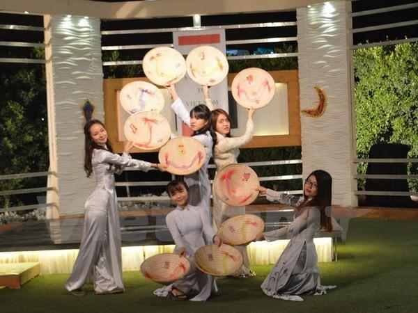 Chương trình quảng bá Việt Nam lên sóng truyền hình Ai Cập - ảnh 1