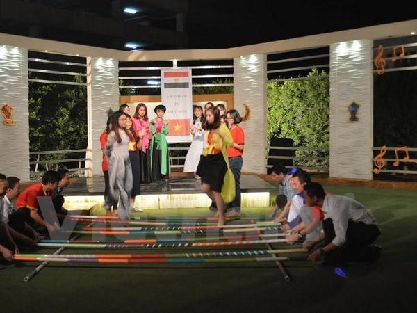 Chương trình quảng bá Việt Nam lên sóng truyền hình Ai Cập - ảnh 3
