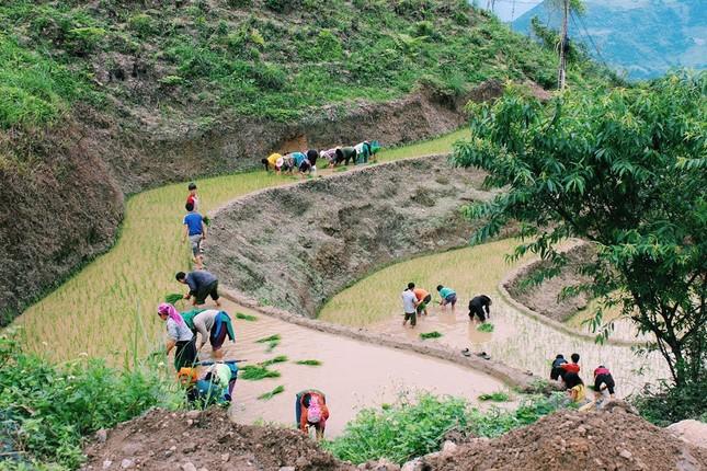 Hà Giang mùa nước đổ - ảnh 2