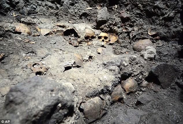 Phát hiện chưa từng có: Con người biết chữa tủy răng từ thế kỷ 8 - ảnh 1