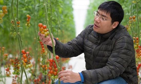 Những công nghệ xanh vì thực phẩm sạch - ảnh 1