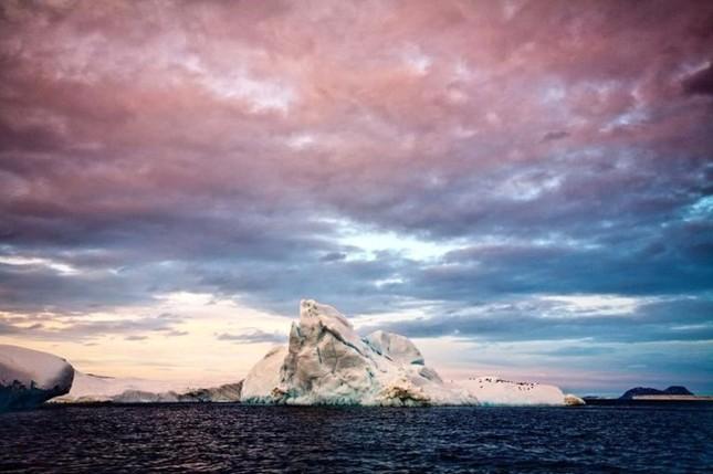 Các bức ảnh về biển ấn tượng trong Ngày Đại dương Thế giới - ảnh 4
