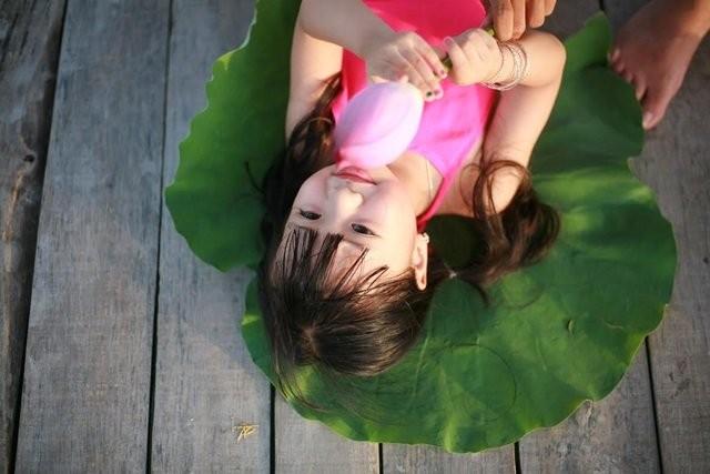 Bé gần 3,5 tuổi chụp ảnh bên sen 'đốn tim' cư dân mạng - ảnh 1