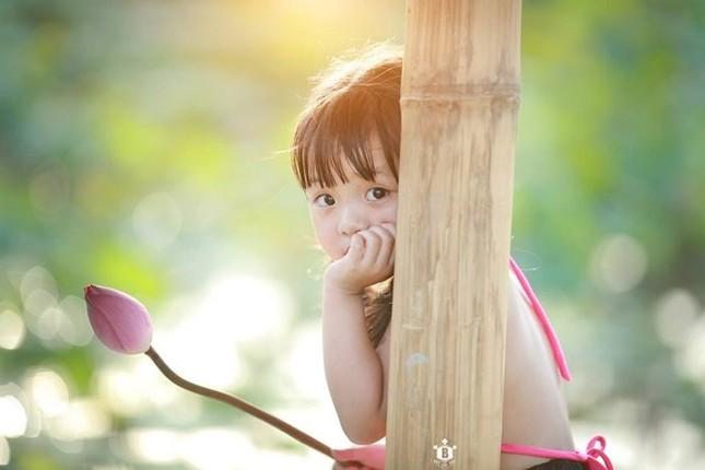Bé gần 3,5 tuổi chụp ảnh bên sen 'đốn tim' cư dân mạng - ảnh 4