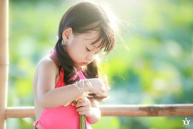 Bé gần 3,5 tuổi chụp ảnh bên sen 'đốn tim' cư dân mạng - ảnh 9