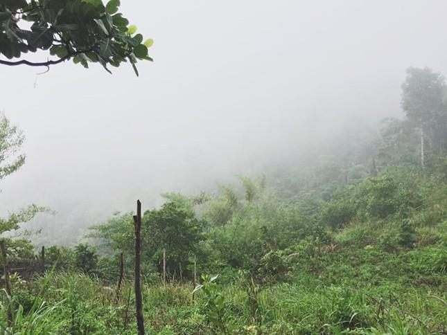 Trekking núi Chứa Chan ngày sương mù - ảnh 1