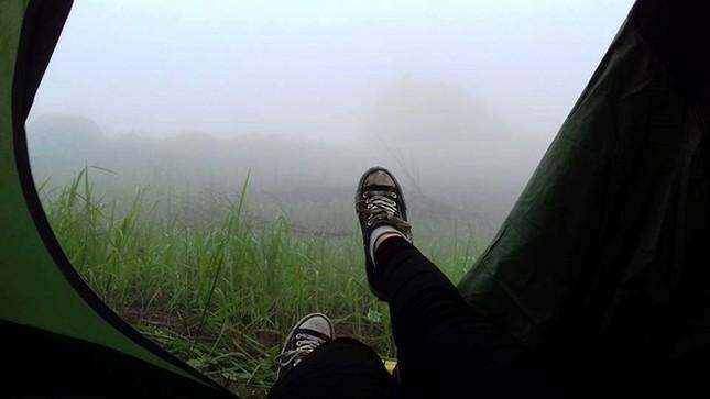 Trekking núi Chứa Chan ngày sương mù - ảnh 5