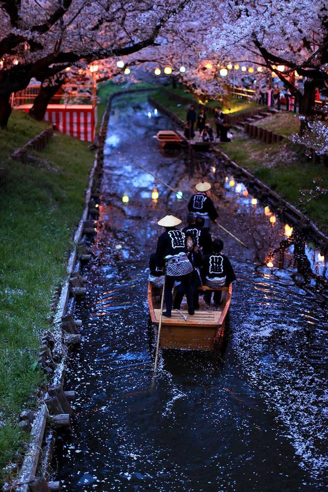 15 lý do khiến bạn muốn đi Nhật ngay lập tức - ảnh 5