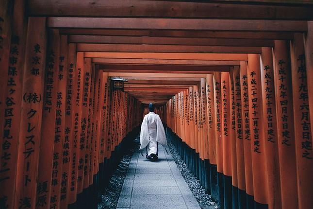15 lý do khiến bạn muốn đi Nhật ngay lập tức - ảnh 6