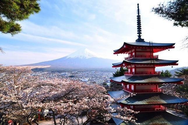 15 lý do khiến bạn muốn đi Nhật ngay lập tức - ảnh 13