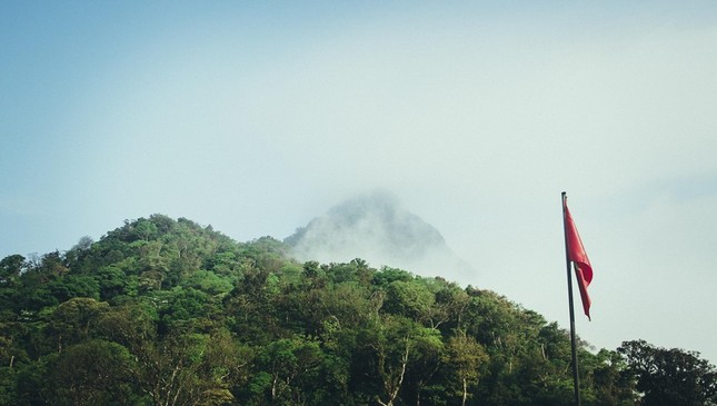 Vẻ đẹp đầy ma mị của Vườn quốc gia Tam Đảo - ảnh 12