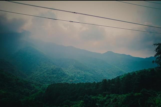 Vẻ đẹp đầy ma mị của Vườn quốc gia Tam Đảo - ảnh 14