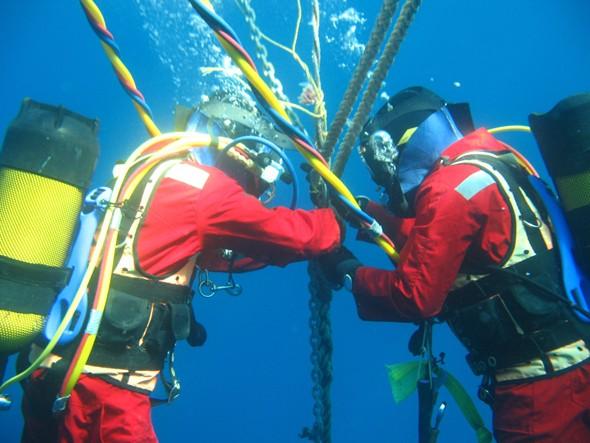 Bảo trì cáp quang biển, truy cập internet có thể bị gián đoạn - ảnh 1