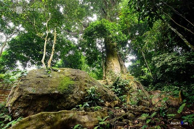 Những dòng thác mát lành ngay ngoại ô Hà Nội - ảnh 8
