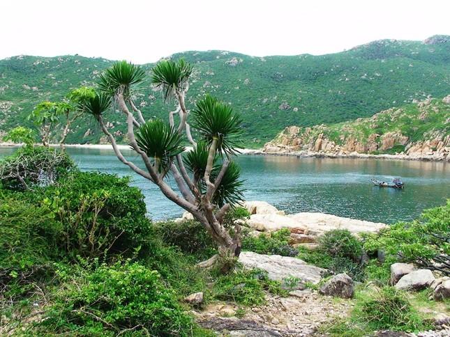 10 điểm dừng chân tuyệt đẹp ở Phan Rang - ảnh 6