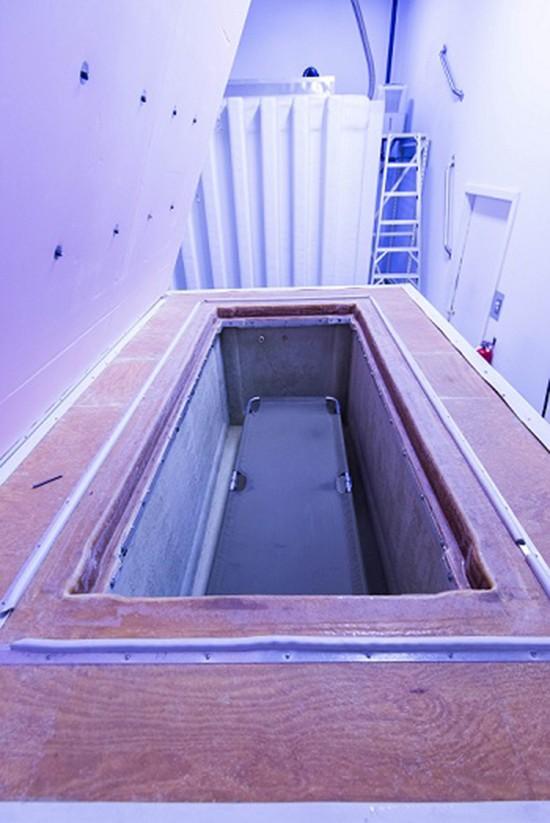 Thử thách của những người hồi sinh từ tủ đông lạnh - ảnh 2