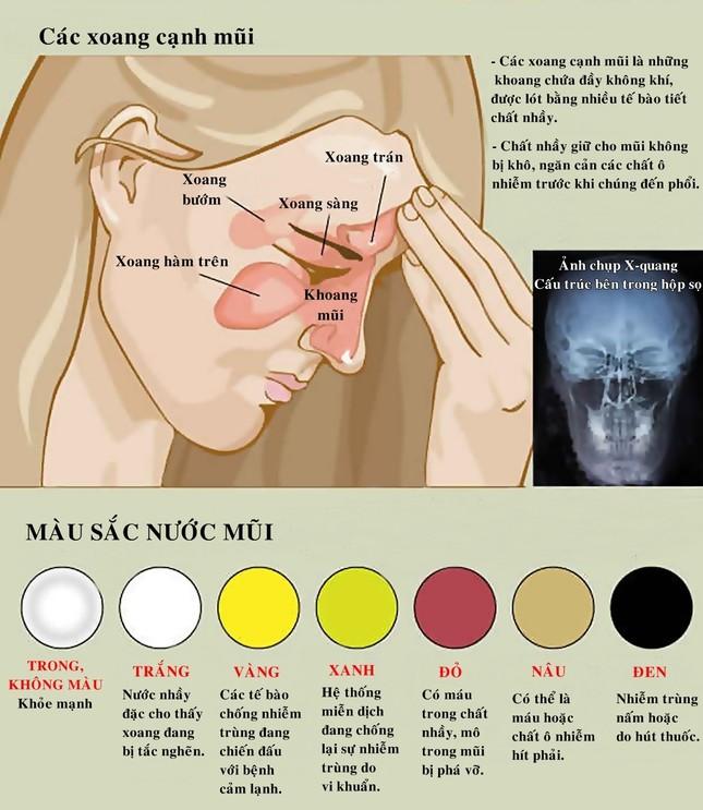 Màu sắc nước mũi tiết lộ tình trạng sức khỏe - ảnh 1