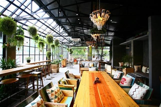 Quán cà phê ngập tràn cây xanh ở Hà Nội - ảnh 1
