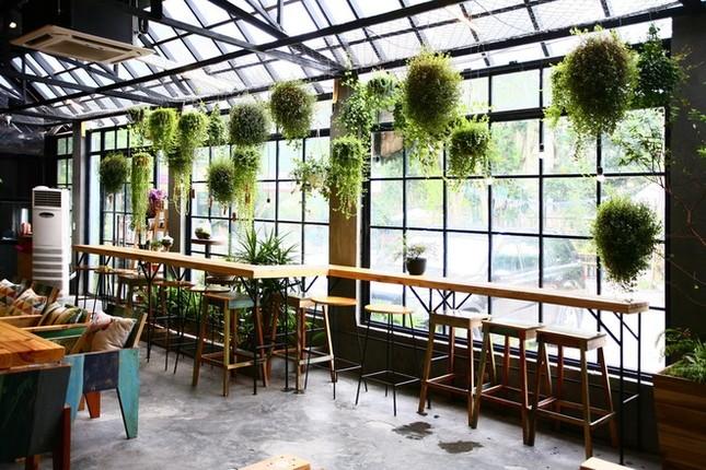Quán cà phê ngập tràn cây xanh ở Hà Nội - ảnh 2