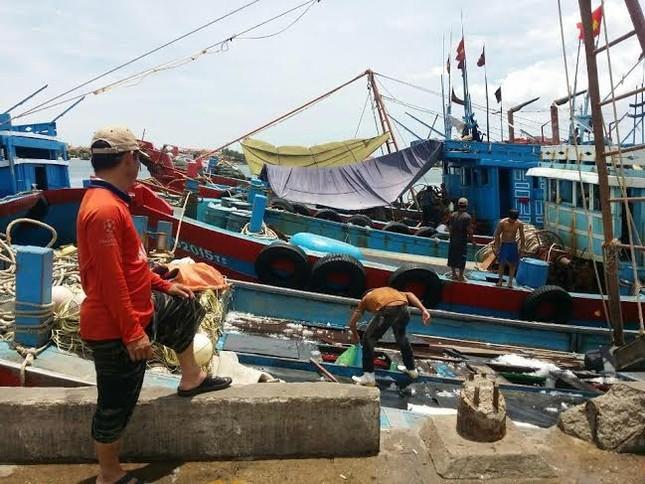 Ngư dân: Đền bù mấy cũng ăn hết, mong biển sạch trở lại - ảnh 3