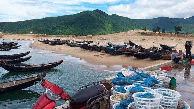 Ngư dân: Đền bù mấy cũng ăn hết, mong biển sạch trở lại - ảnh 5