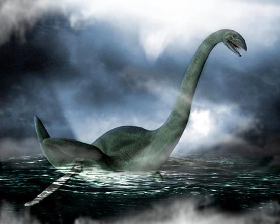 Xác động vật dạt vào bờ Loch Ness, nghi là quái vật huyền thoại - ảnh 4