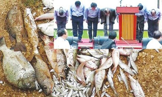 Từ chuyện bạch hóa cá chết - ảnh 1