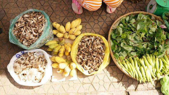 Đặc sản nấm mối chỉ có vào mùa mưa ở miền Tây - ảnh 9