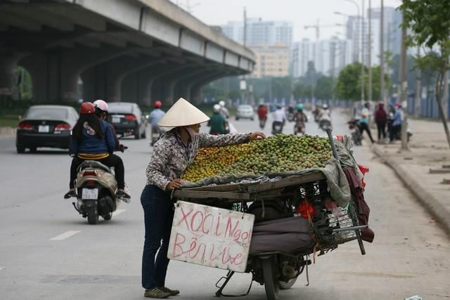 'Luật ngầm' của dân buôn hoa quả vỉa hè - ảnh 2
