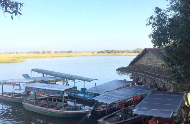 Sếu đầu đỏ bỏ Việt Nam sang Campuchia - ảnh 10