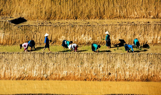 Tuyệt tác ruộng bậc thang Hoàng Su Phì mùa nước đổ - ảnh 1