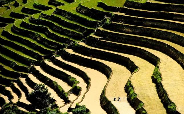 Tuyệt tác ruộng bậc thang Hoàng Su Phì mùa nước đổ - ảnh 2