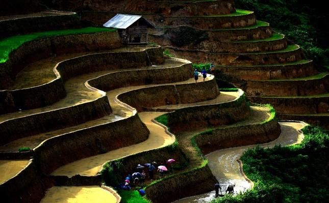 Tuyệt tác ruộng bậc thang Hoàng Su Phì mùa nước đổ - ảnh 3