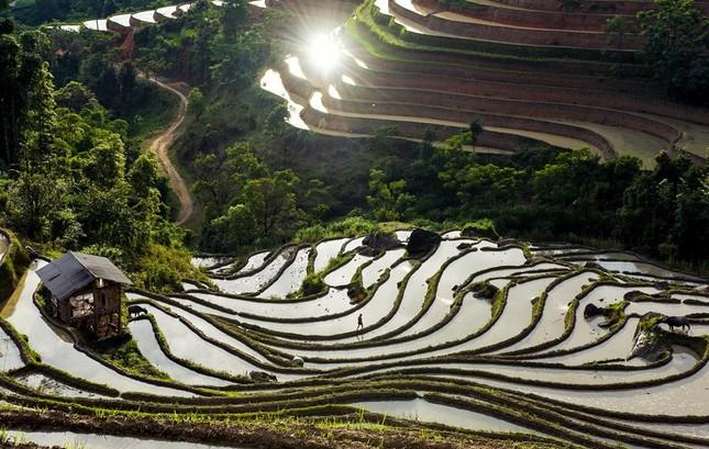 Tuyệt tác ruộng bậc thang Hoàng Su Phì mùa nước đổ - ảnh 5