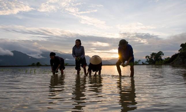 Tuyệt tác ruộng bậc thang Hoàng Su Phì mùa nước đổ - ảnh 8