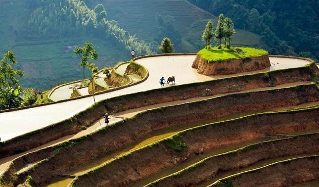 Tuyệt tác ruộng bậc thang Hoàng Su Phì mùa nước đổ - ảnh 7